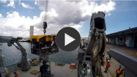 image of mobilisation of rov