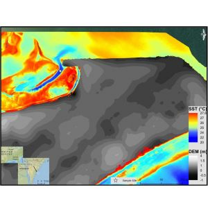 Mapping Submarine Groundwater Discharge with Thermal Infrared Imaging