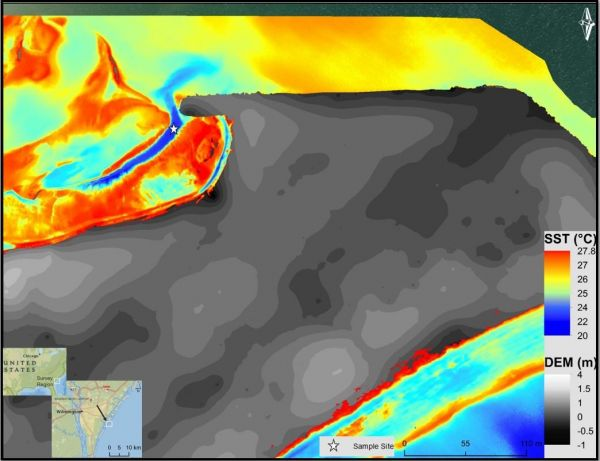 Figure 4: Nadir view of Masonboro Island UAS-TIR survey region overlaid on UAS-derived DEM.