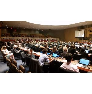 Working Group on Marine Geospatial Information Established by UN-GGIM 7