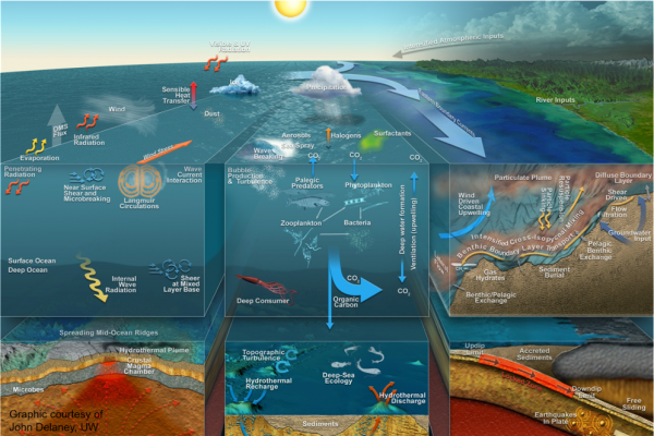 Oceanography is a multidisciplinary science involving observation, experimentation, and modelling of physical, chemical, biological and geological processes. Source: United States Naval Academy. (Graphic courtesy: John Delaney).