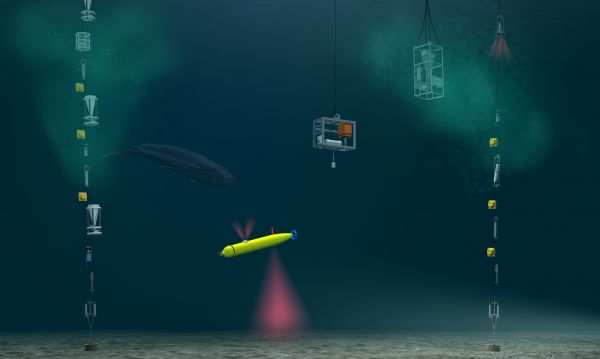 Figure 3: Moorings with instruments and an AUV used by the Alfred Wegener Institute (Courtesy: AWI, Bremerhaven/FRAM/Sabine Lüdeling).