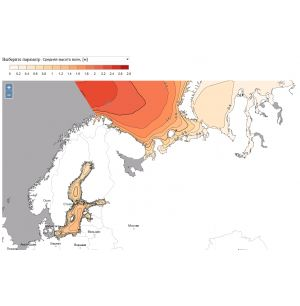 First Version of the Russian Wave Energy Web-atlas