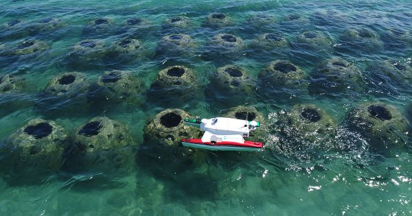 Artificial reef survey offshore Fort Pierce, Florida.