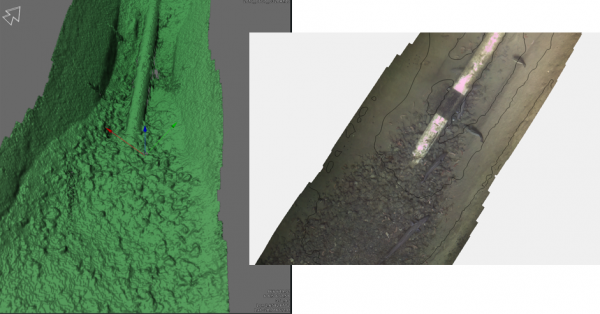 Figure 4: Image-derived high-density 3D point cloud and stitched image mosaic.