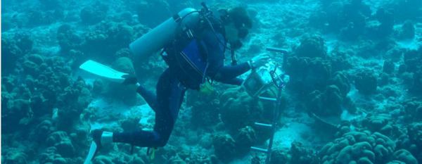 Oceanographers often need to work as divers to make in situ measurements. (Source: NOAA)