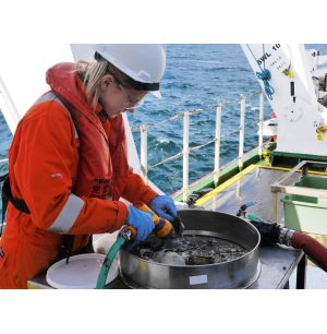 Fugro Performs Environmental and Geotechnical Surveys Offshore Angola