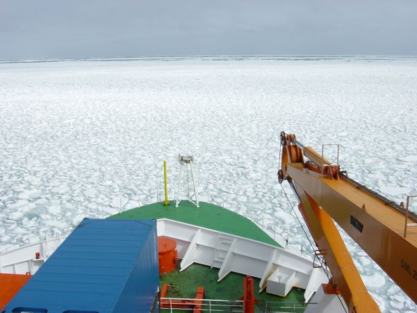 Figure 2: Ice coverage in the Southern Ocean (Courtesy: AWI, Bremerhaven).