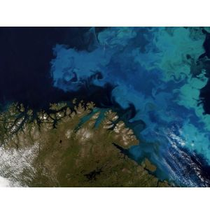 CGG Satellite Mapping Completes Barents Sea Seeps Study