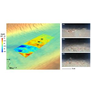 Reference Area for Multibeam Bathymetry and Backscatter